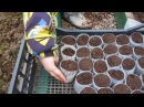 Изготовление стаканчиков для рассады капусты своими руками