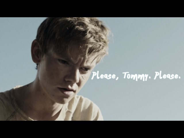 [Newt Thomas] 𝒫𝓁𝑒𝒶𝓈𝑒, 𝒯𝑜𝓂𝓂𝓎. 𝒫𝓁𝑒𝒶𝓈𝑒.