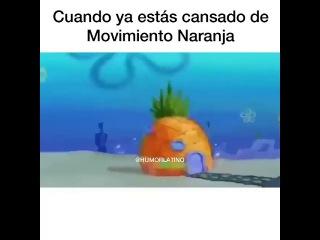 Cuando ya estas cansado del movimiento naranja