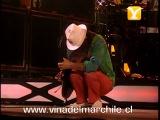 Santana, Jingo - Vive la Vida, Festival de Vi