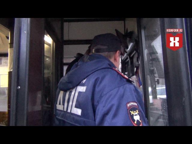 В Апатитах автобус не пропустил пешехода на зебре