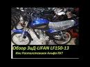 Растолстевшая Альфа RXМотоцикл ЗиД-LIFAN LF150-13. Обзор!