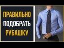 Как подобрать рубашку Руководство к действию