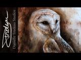 Latte - Barn Owl Painting - Acrylics &amp Oils - Time Lapse by Danielle Trudeau Studios