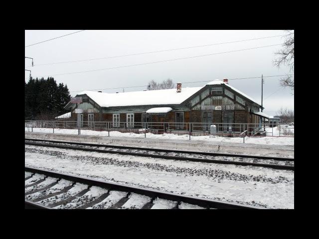 Январское утро на бывшей станции Сада Горьковской железной дороги.