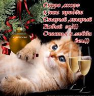 Сегодня старый Новый год Мы будем отмечать, Гуляй и радуйся, народ! Желаю не скучать!  Пусть снежно-белая зима Вас радует добром, Удача к вам спешит сама, И счастье в каждый дом!