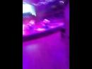 Цирк на Фонтанке / Цирк Ч... - Live