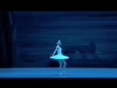 Ballet Swan Lake Russian Ballerina Svetlana Zakharova Soloist of the Mariinsky Theater in 1996 2003 Prima Ballerina of the Bolshoi Theater and Milan Theater La Scala People's Artist of Russia laureate of the State Prize of the Russian Federation