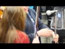 Новогодний трамвай 1 и дикая шевелёнка