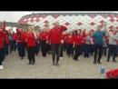 Волонтеры кубка конфедерации 2017 sps