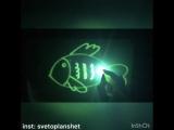 Наша любимая рубрика #рисуемсветом от @ svetoplanshet 😊Сегодня учимся рисовать рыбку🐠, погружаемся в подводный мир🌊💦🐬