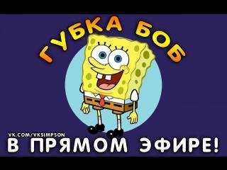 Порно спанч боб видео вконтакте