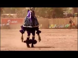 ТАНЦУЮТ ВСЕ! А когда на море качка! Прикольный танец папуаса.