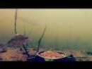 Рыбалка на ЖИВЦА ЩУКА и Подводная съемка