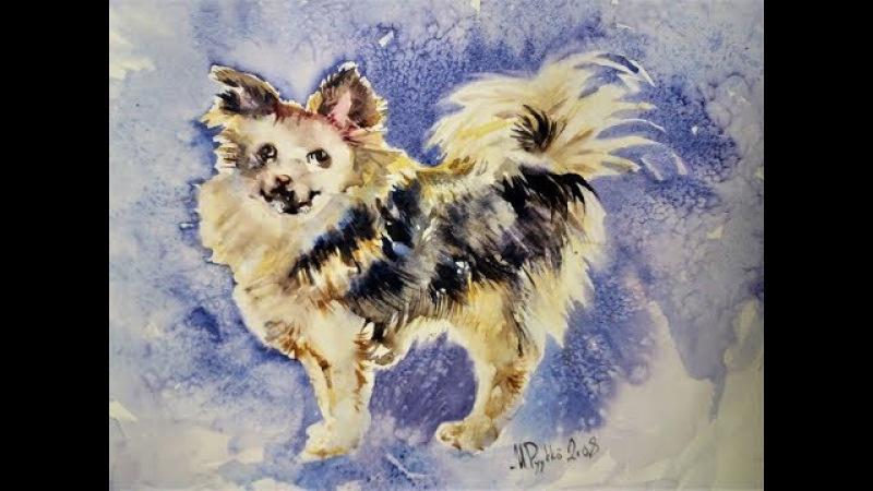 Уроки Майре Пююкко. Рисуем собаку акварелью.