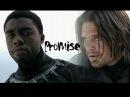 Bucky t'challa ft. zemo - promise