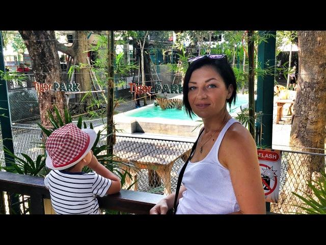 Зоопарк Tiger Park в Паттайе. Погладить тигра нам не по карману! Тайская еда. Район пляжа Джомтьен.