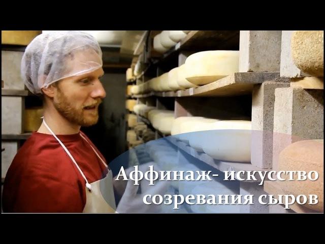 Аффинаж - искусство созревания сыров