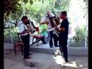 Nunta la Sascut bacau 1 Niste moldoveni