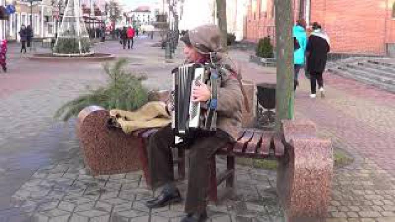 Тиха вода! польская песня на улице Бреста! Brest sity! Street! Music!