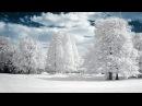 Падает снег. Автор слов,муз и исп -Виктор Давидзон .