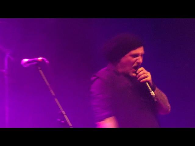 Eluveitie - Thousandfold - live @ Eluveitie Friends @ Halle 622 in Zurich 30.12.2017