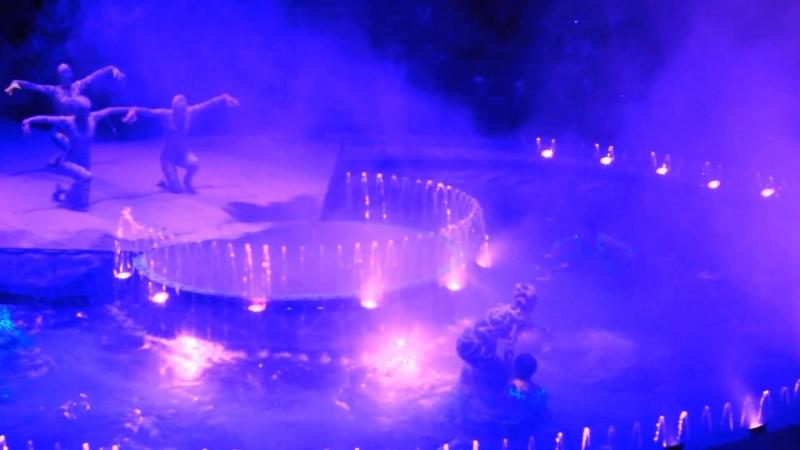 Цирк на воде, Оля, Катя, Саша и Максим.
