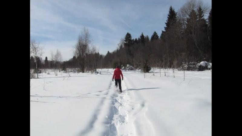 Прогулка окрест Осташёво