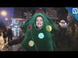Настоящая живая елка появилась на базаре в Москве