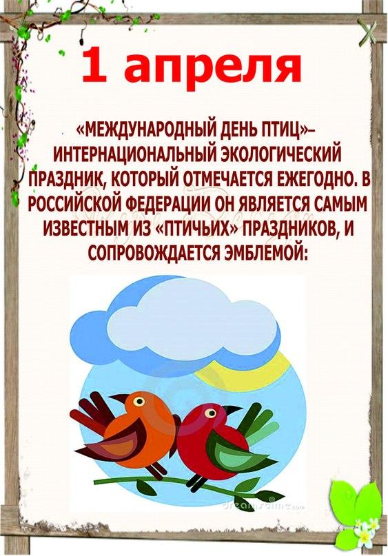 Светлана Большунова   Новороссийск