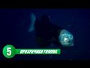 [САМОЕ САМОЕ В МИРЕ! (ТОП-5, ТОП-10)] 10 CАМЫХ ЖУТКИХ СУЩЕСТВ ИЗ ОКЕАНСКИХ ГЛУБИН