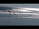 Вадим Черновецкий. -- Индийский океан в Куте, Бали, Индонезия.