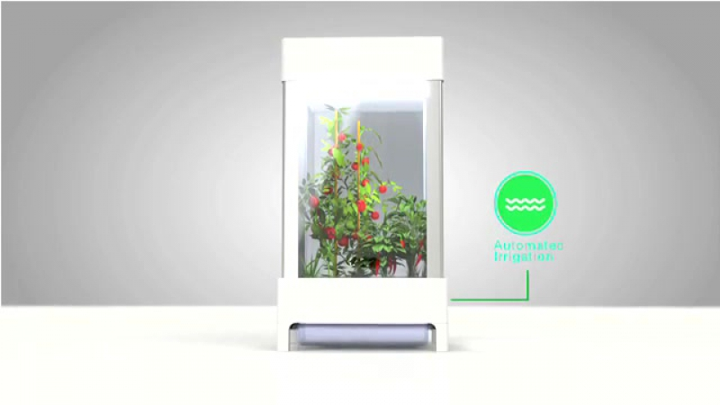 [NIWA - The world's first smartphone-controlled growing system]