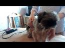 Стрижка собаки мини-ши-тцу (и других маленьких пород ), ( стрижка щенок )