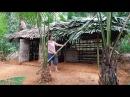 Primitive Technology Building a hut for cooking kitchen-hut Primitive-Hut