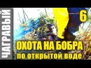 Охота на бобра по открытой воде 2 Beaver hunting in open water 2