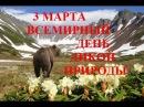 Всемирный день дикой природы 3 марта World Day Wildlife