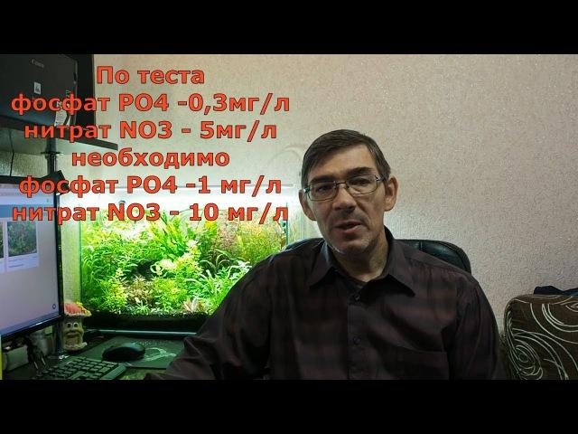 Как расчитать количество вносимых удобрение в аквариум