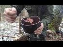 что можно есть в лесу или как приготовить гарнир из сосновой коры