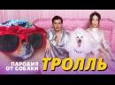 Время и Стекло - Тролль ПАРОДИЯ от СОБАКИ / МС ПОНЧИК - СУПЕРСТАР