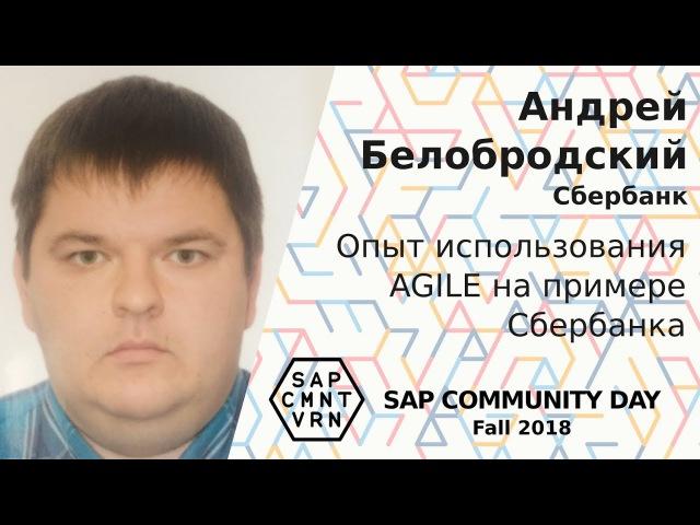 Андрей Белобродский - Опыт использования AGILE на примере Сбербанка