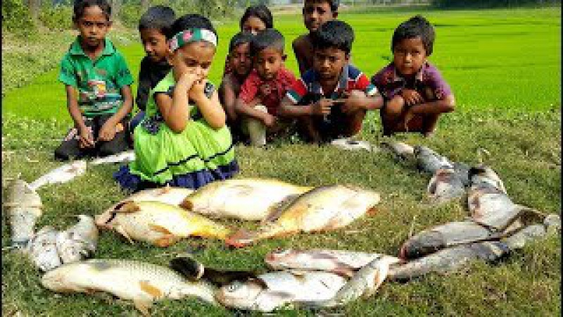 Fish Bori Curry Recipe Dress Gifted To All Kids Fish Curry Cooking With Winter Vegetables