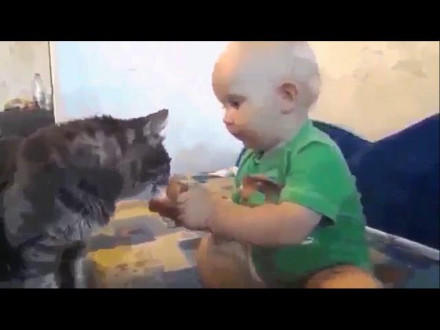 Ешь Васька,ешь-- ато пока мамка вконтакте сидит ,то с голоду помрём...