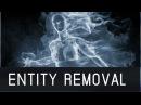 Negative Entity Bad Spirit Demonic Removal Banishing Frequency