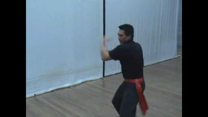 Southern Praying Mantis Kung Fu (Chow Gar) Pai Tarn Form