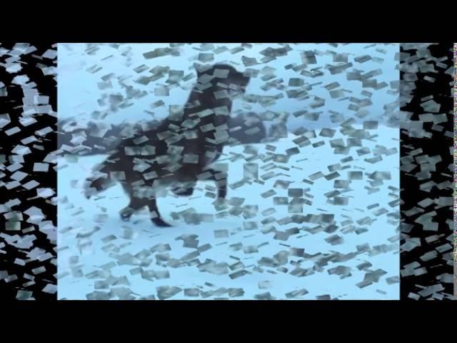 Валерий Ярушин. Сказка о сером волке