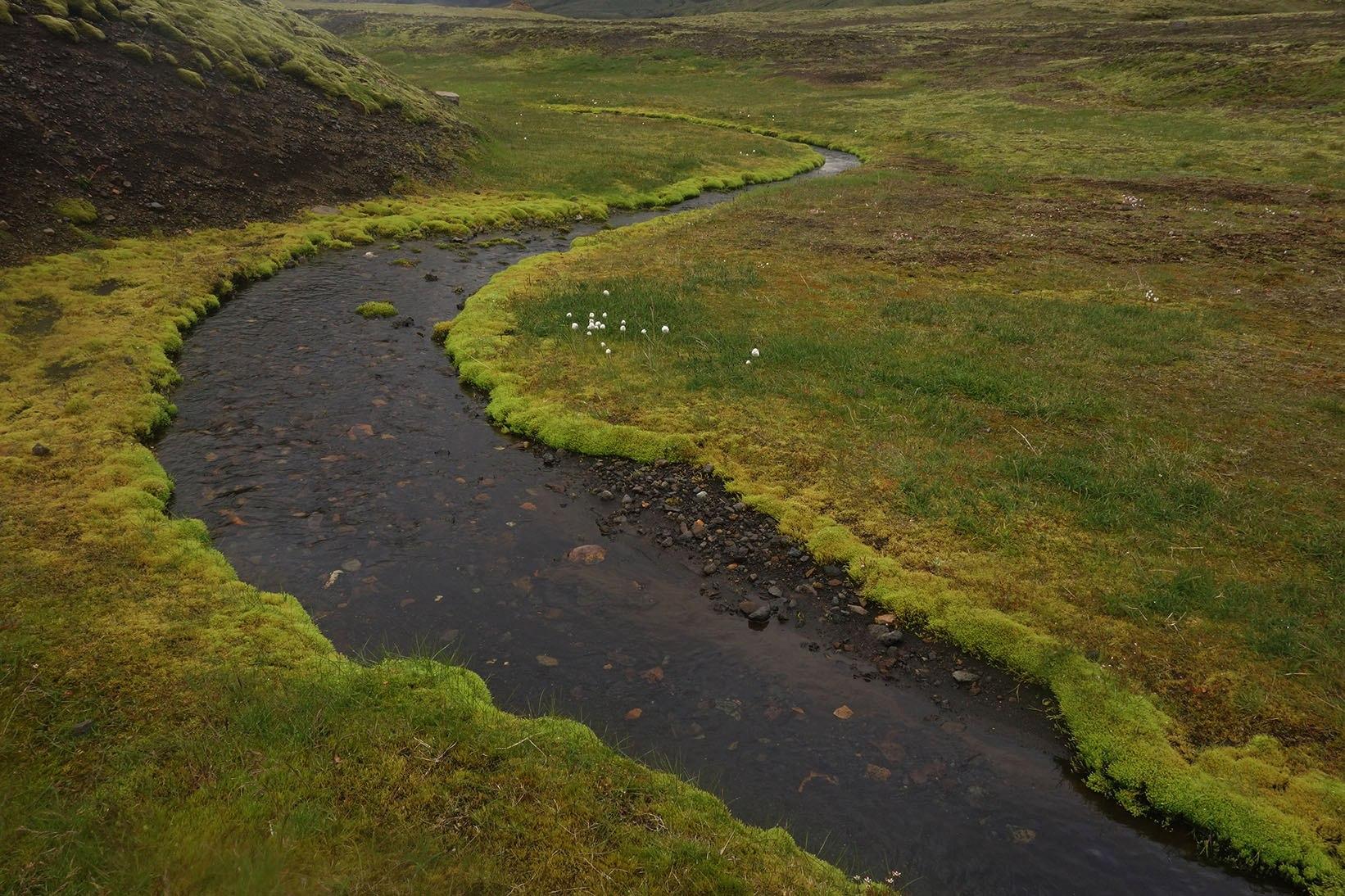 ручеек в Исландии