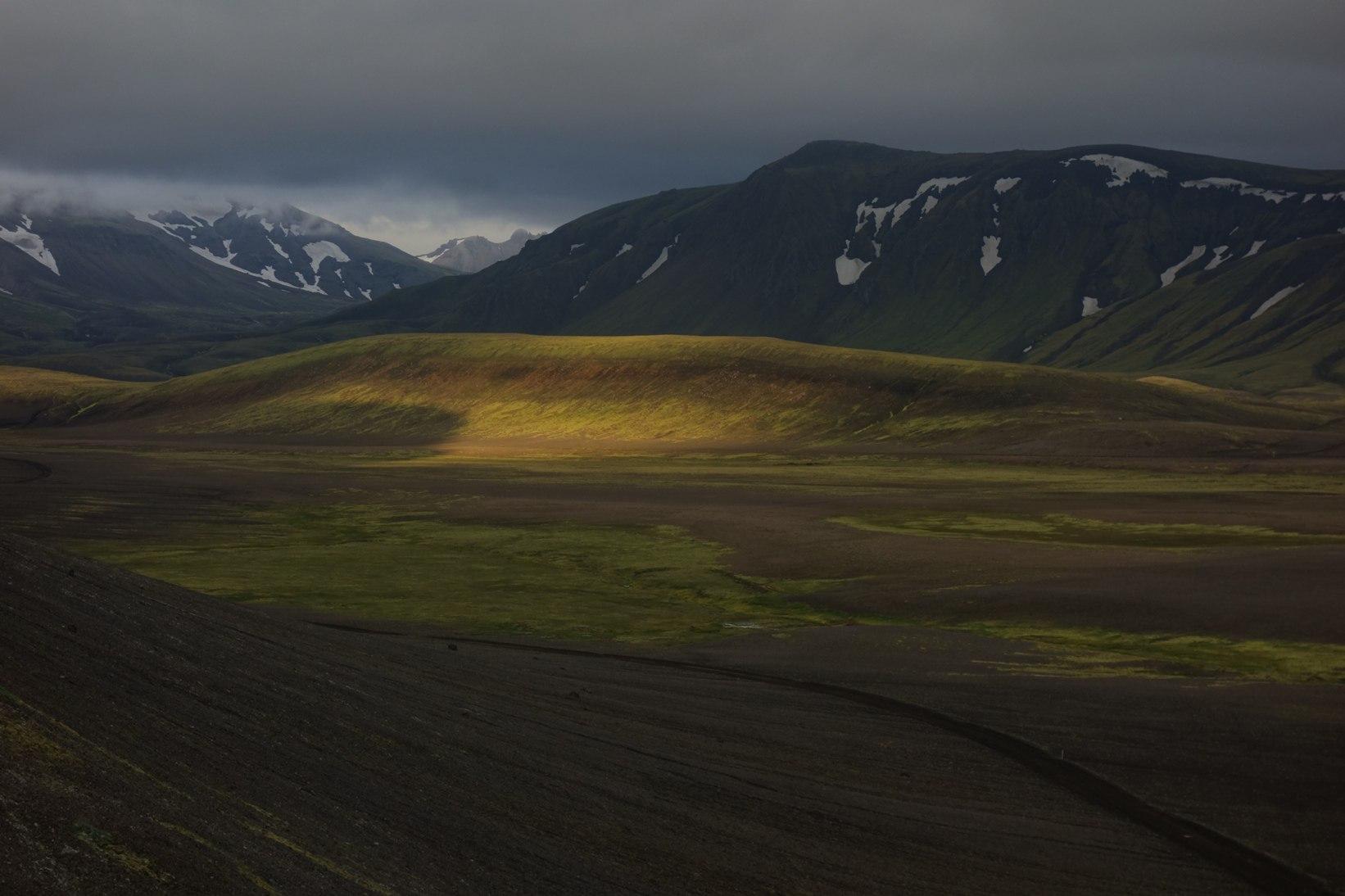 Исландия, поле