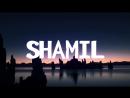 Shamil dly teby