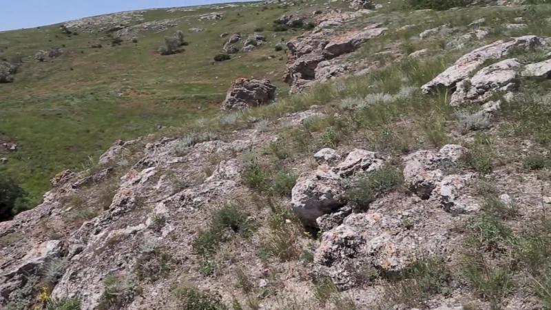 Крым Казантипский заповедник Crimea Kazantip national park